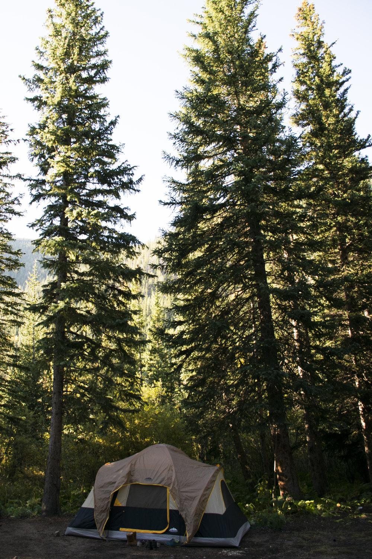 camping22.jpg