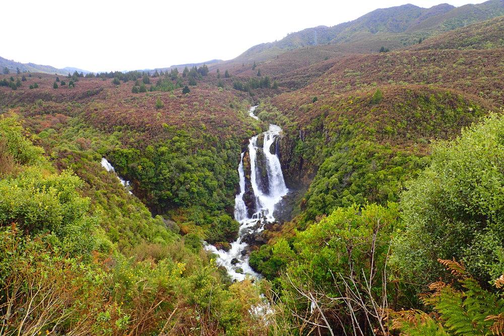 Waipunga Falls outside of Napier, New Zealand