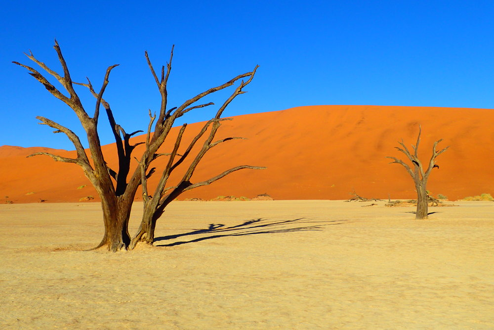 Deadvlei - More to come in my next post!