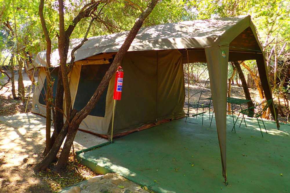 """A """"glamping"""" tent at Marcs Treehouse Lodge that I didn't have to stay in."""