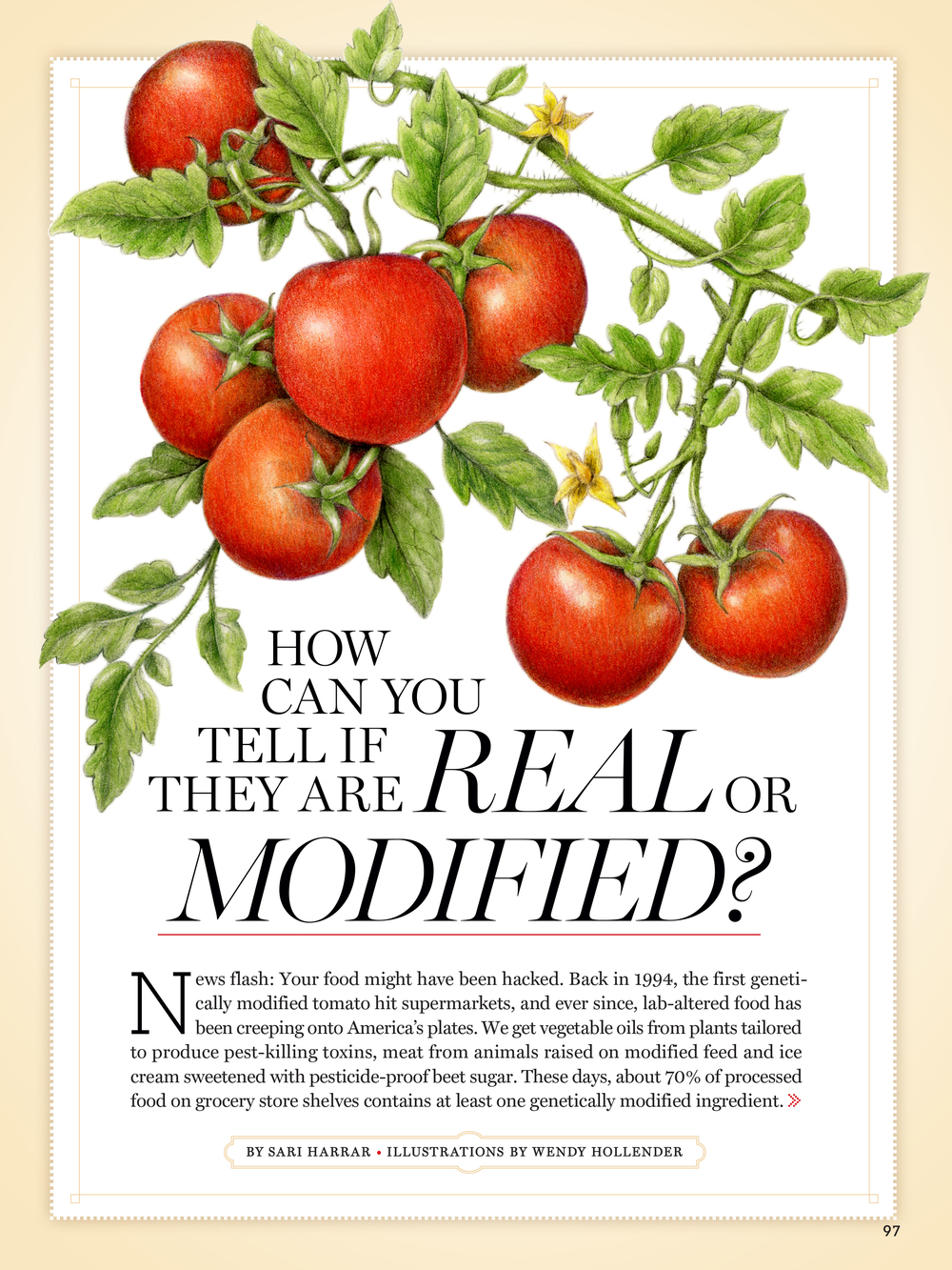 GOOD HOUSEKEEPING MAGAZINE August 2014 Illustrations of vegetables and fruits for an article about genetically modified organisms (GMOs).  Read the article here.