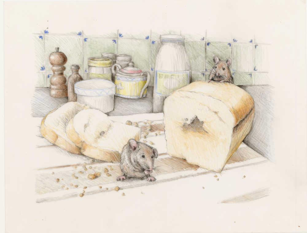 The mouse eating crumbs of bread