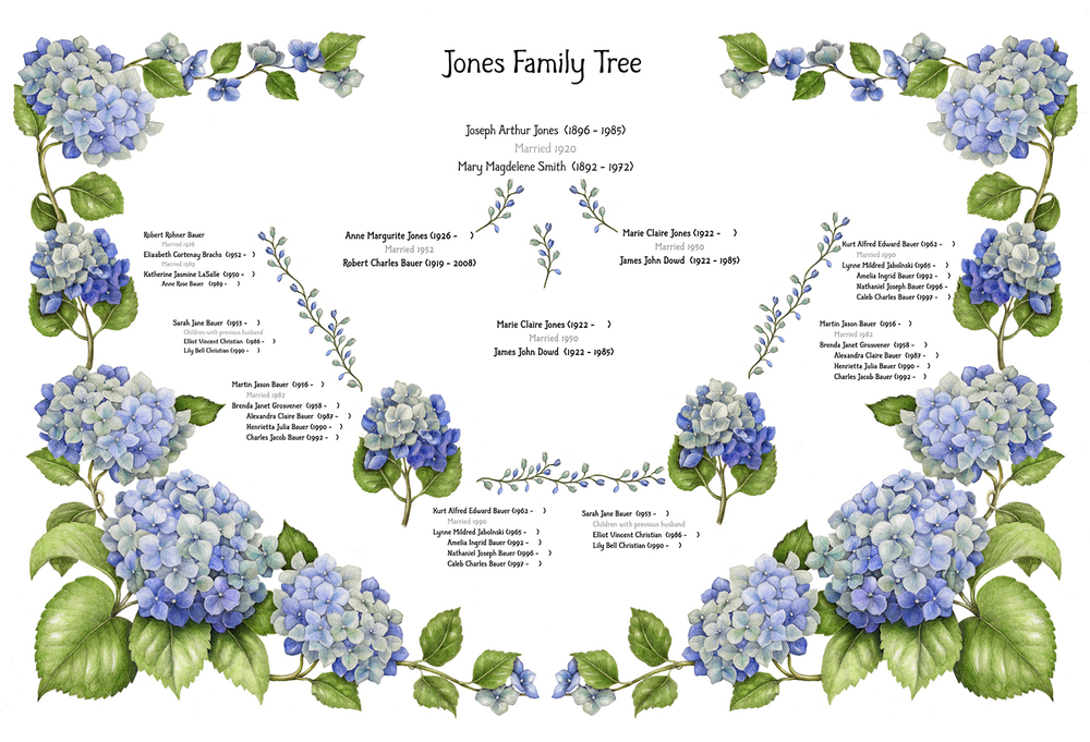 "Illustrations commissioned for Arbor Arts, ""creating fine art family trees customized with your family history. Your family history combined with a beautiful design and created with the finest materials results in your very own personalized work of art."""