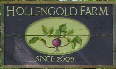 Hand Painted Sign for Hollengold Farm