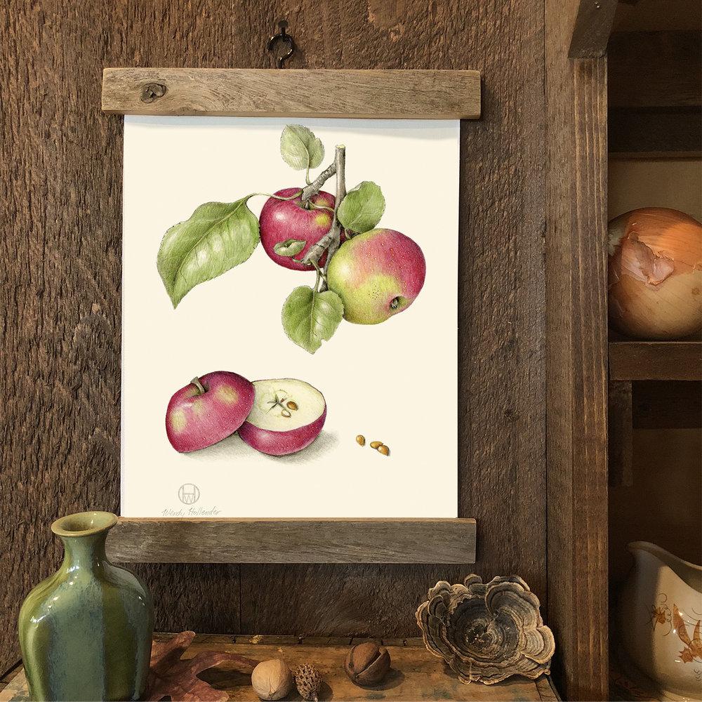 Tideman Apple