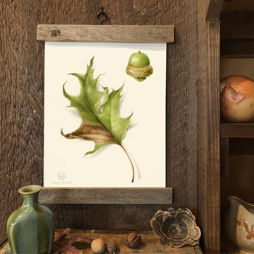 Oak Leaf & Acorn