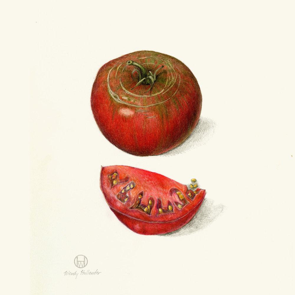 Brandywine tomato - Solanum lycopersicum