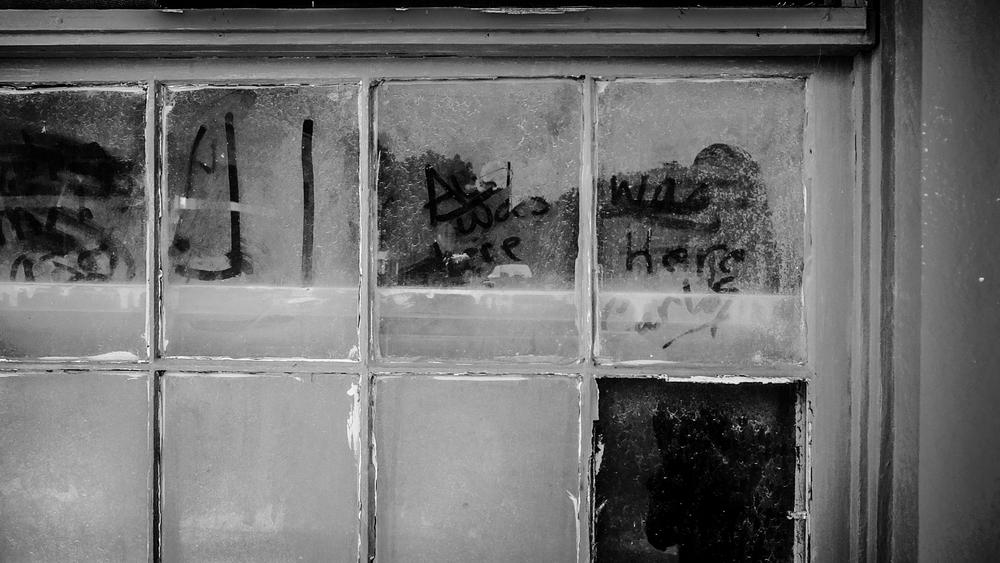 Granger-Dusty-Window-6132.jpg