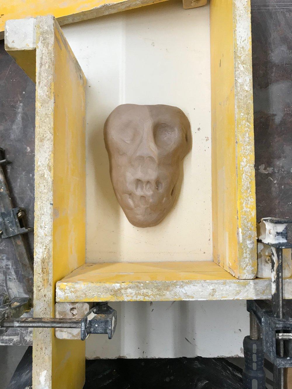 The Skull of a Monkey Captain