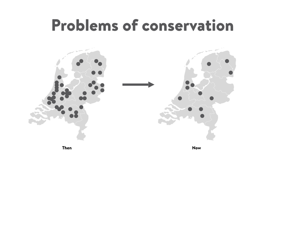 Problems of conservation