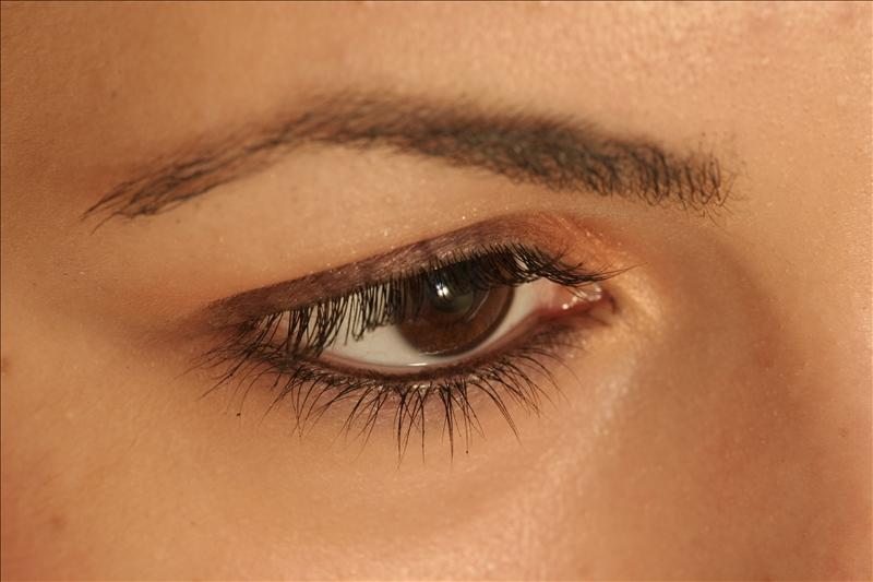 Brown-Eye-550623.jpg