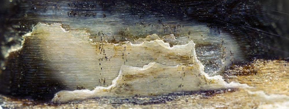 Alabaster Cliffs