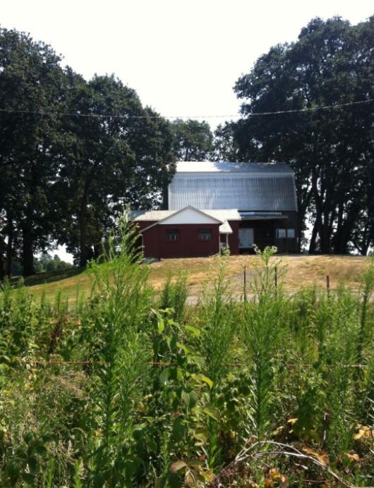 The farm.