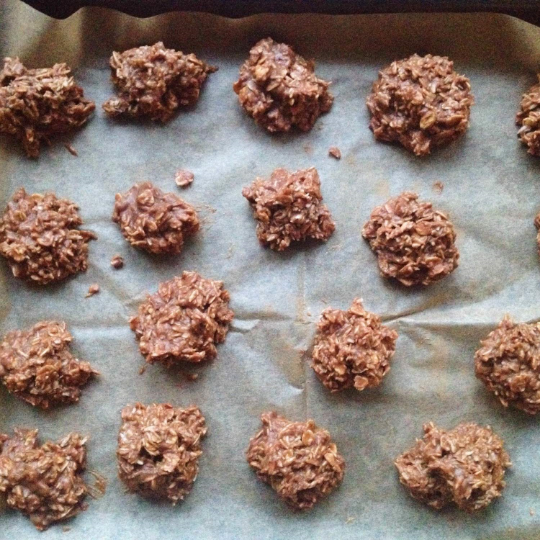 No-Bake Peanut Butter Coconut Bites Recipe 1