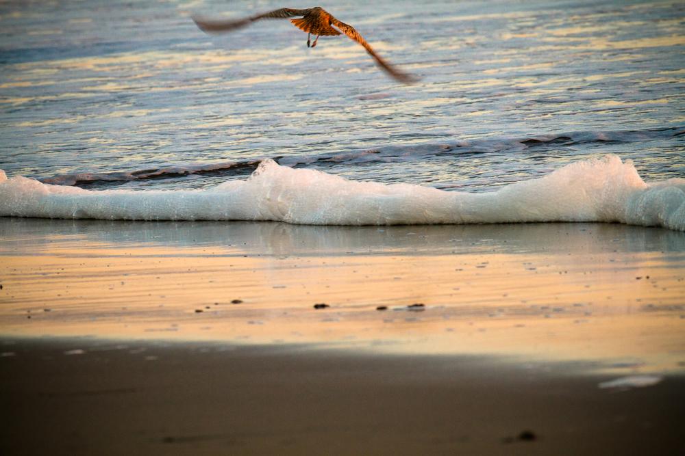 Sea_foam.jpg