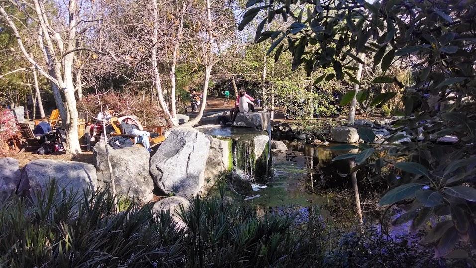 Stone Brewery's onsite imbibing gardens
