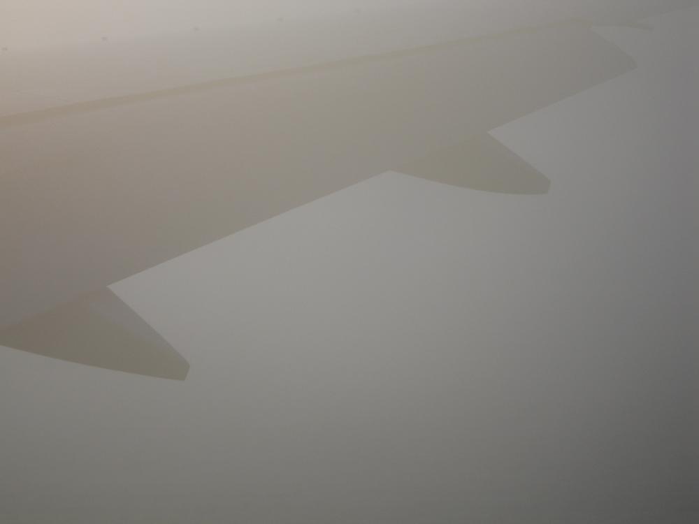 wing-2486.jpg