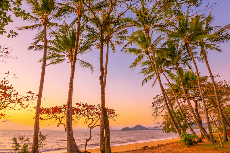 Palm Cove Sunrise
