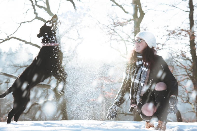 girl and dog in snow.jpg