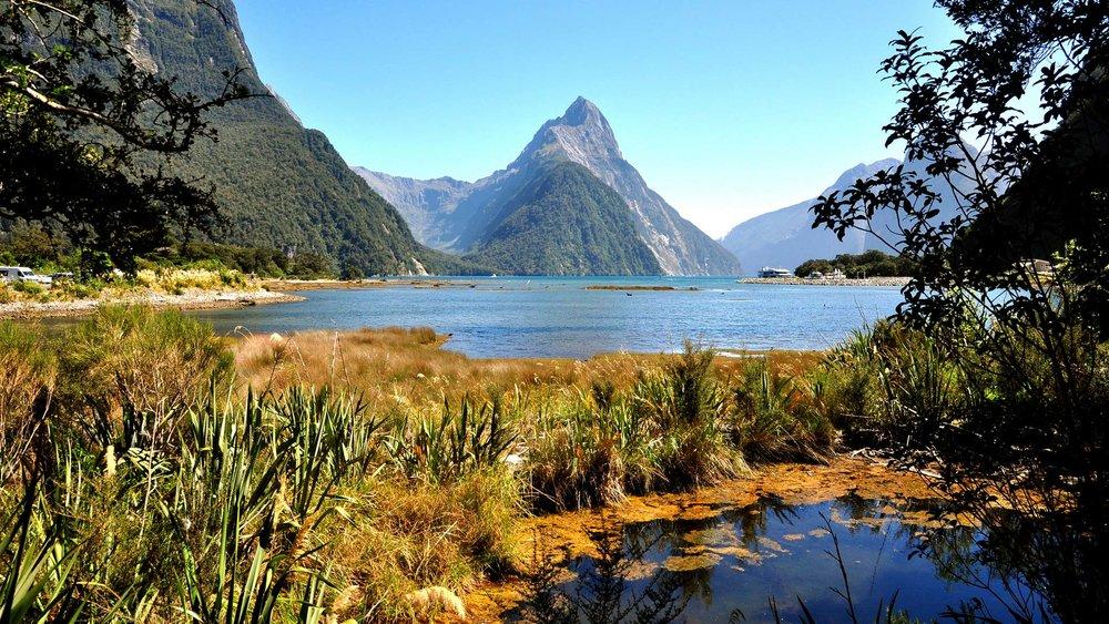 fiordland-nationa-park-hero.jpg