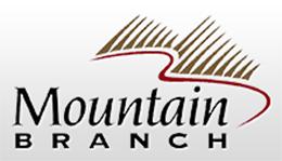 mountainbranch260.png