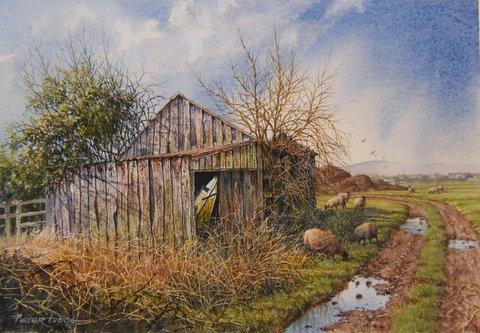 2014-4 Old shed 026.jpg