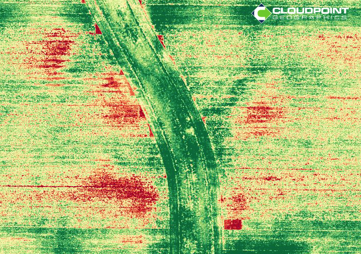 CDPT_NDVI.png