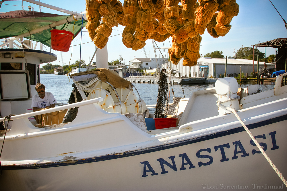 Sea sponges in Tarpon Springs
