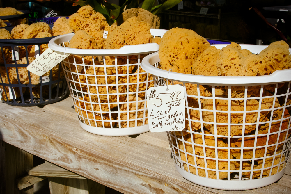 sponges Tarpon Springs