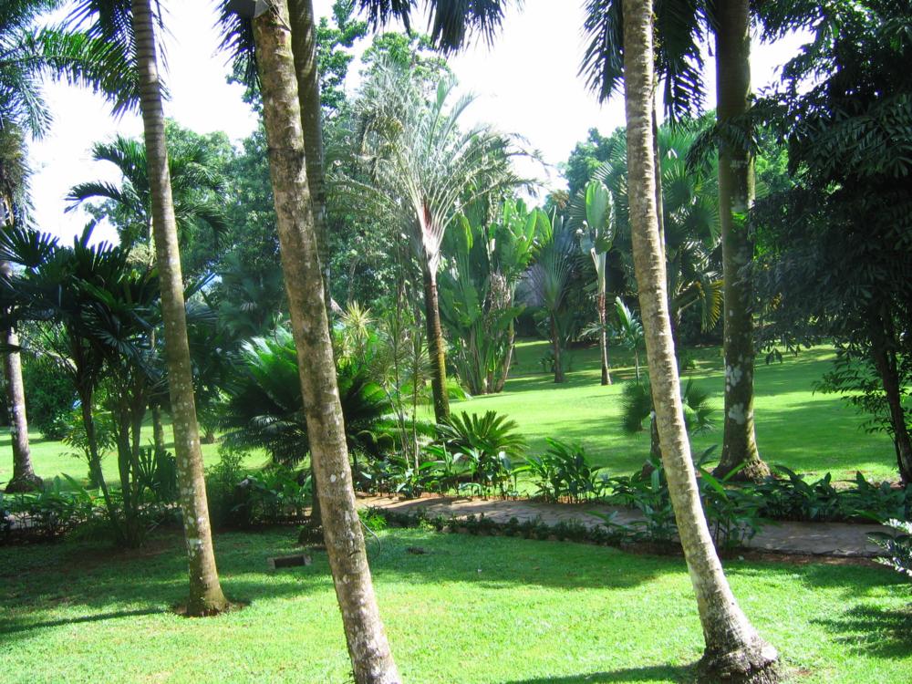 The grounds of Bosque del Cabo, Costa Rica