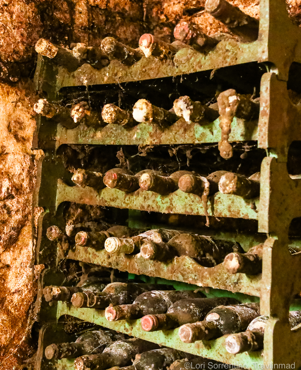 aged wine bottles at Pacina Winery, Chianti Colli Senesi, Tuscany