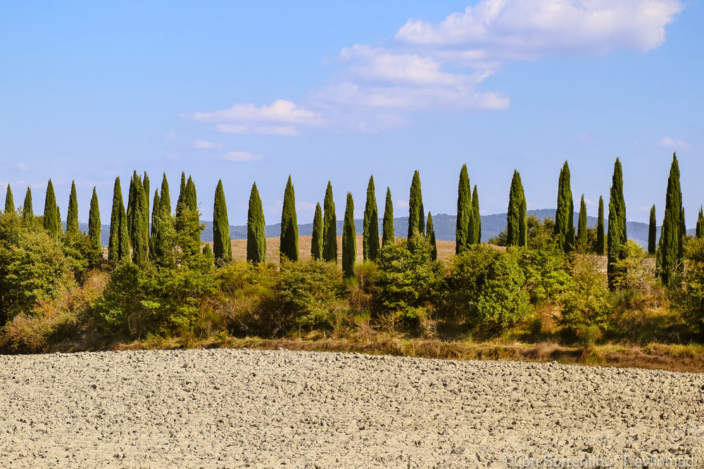 The Crete Senesi of Tuscany, the sedimentary clay of the Pliocene sea which covered the area millions of years ago