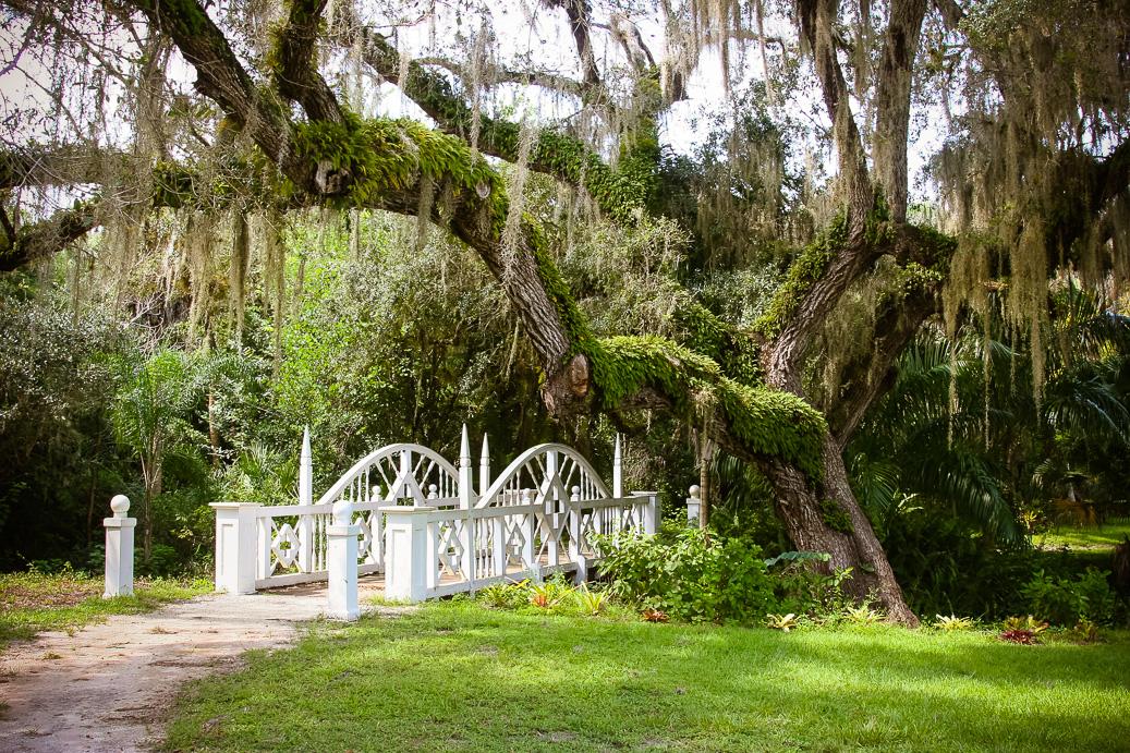 Religious cult or Utopia? Explore Florida\'s Fascinating History at ...
