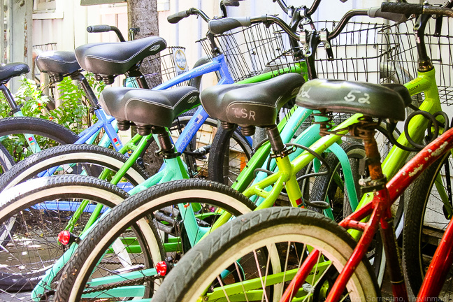 Colorful bicycles, Key West, Florida