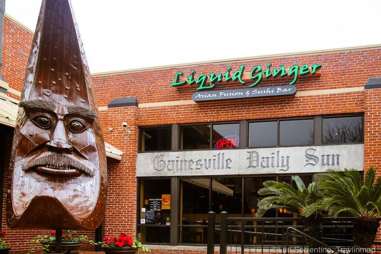 Pad Thai, Liquid Ginger, Gainesville, FL