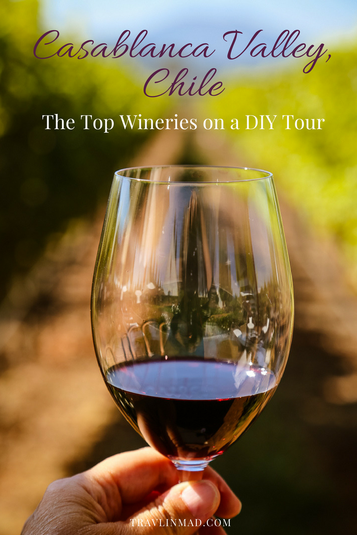 Taste the wines of Chile on a Chilean wine tour through the Casablanca Valley