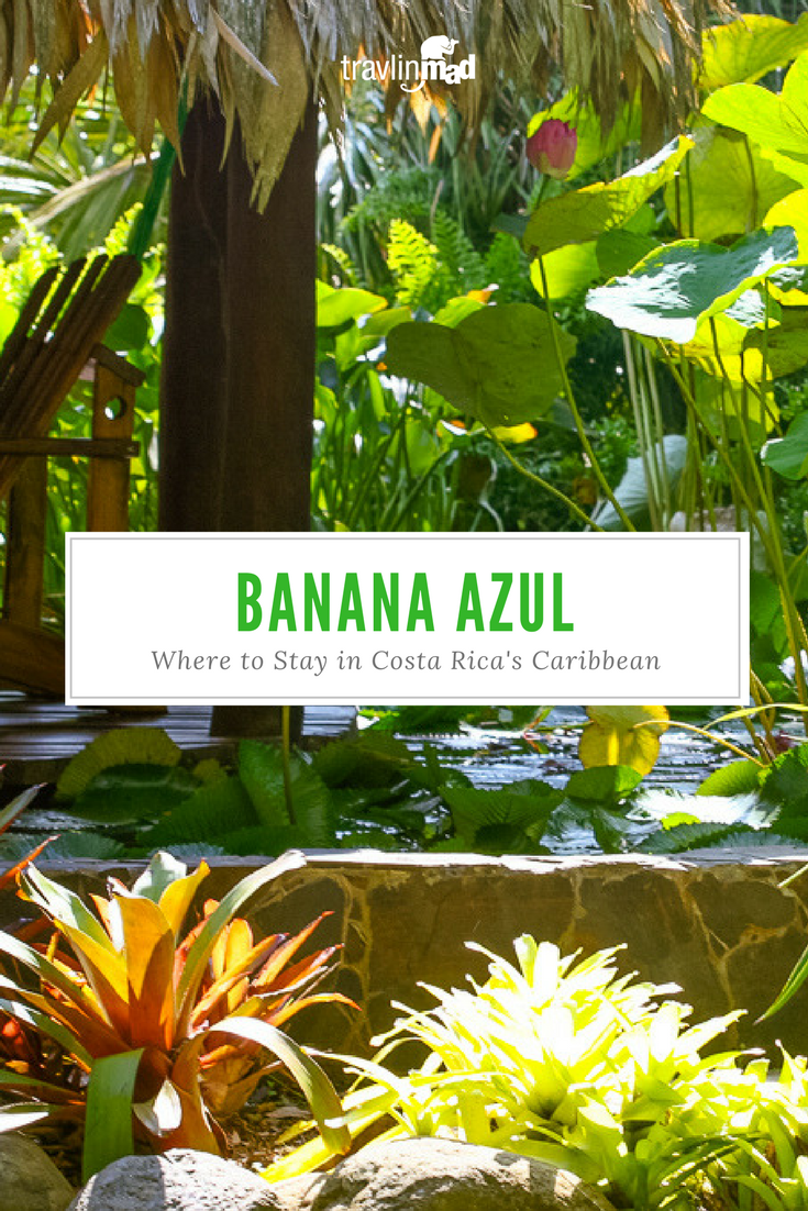 Hotel Banana Azul: Where to Stay in Costa Rica's Caribbean Paradise