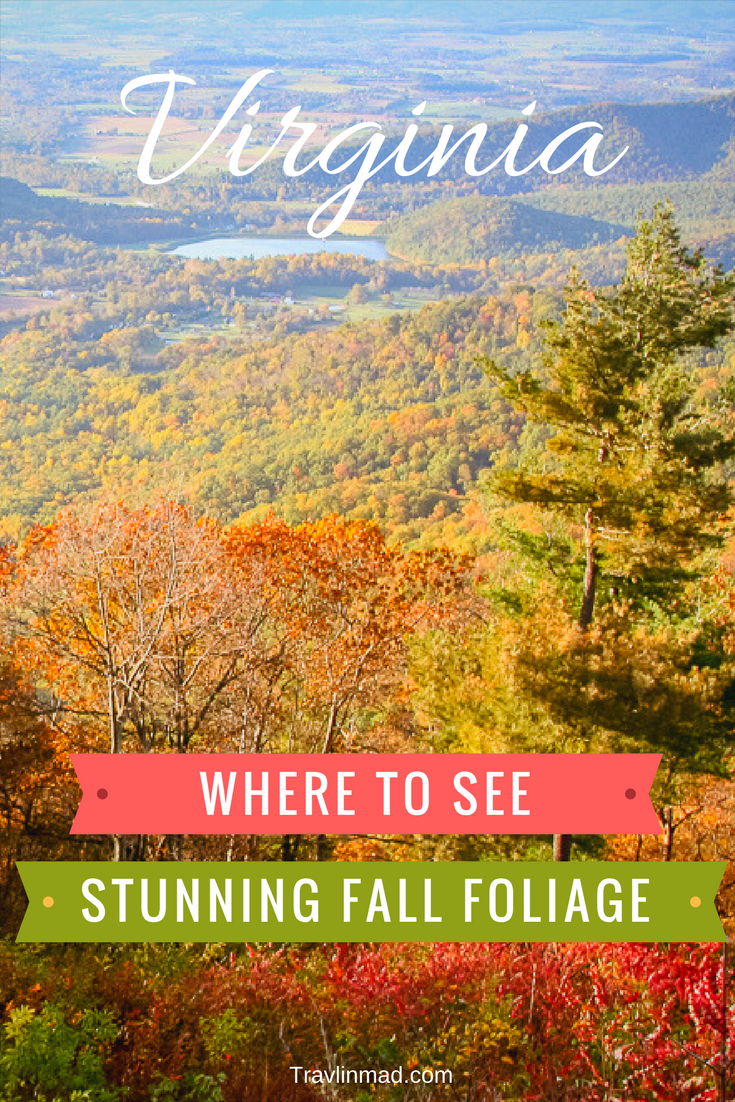 Where to see stunning fall foliage in Virginia on Skyline Drive