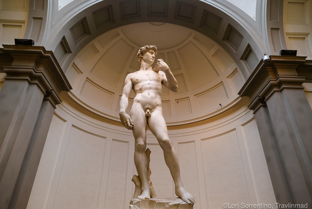 The Statue of David, Galleria dell'Accademia, Florence, Italy