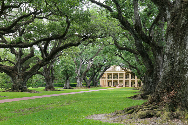 3 Unforgettable New Orleans Plantations to Visit Along the Great