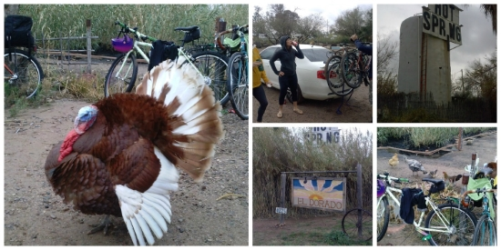 Our first attempt at bike camping featured Tom, the Turkey.... but no actual bike camping.  Version 2.0 went a little smoother.