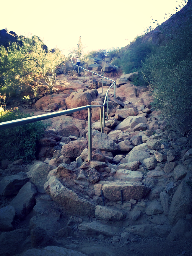 Just one reason MTBers aren't allowed on this particular Echo Canyon Trail (can you imagine to broken bone toll count on this guy!)