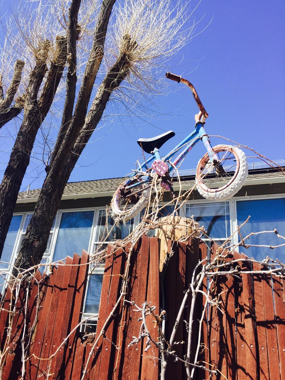 this was my beacon- princess bike