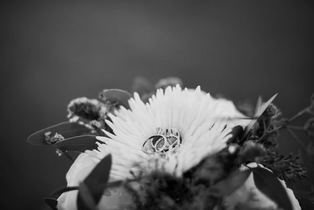 Wedding Ring Photos - Woven Strands Photography