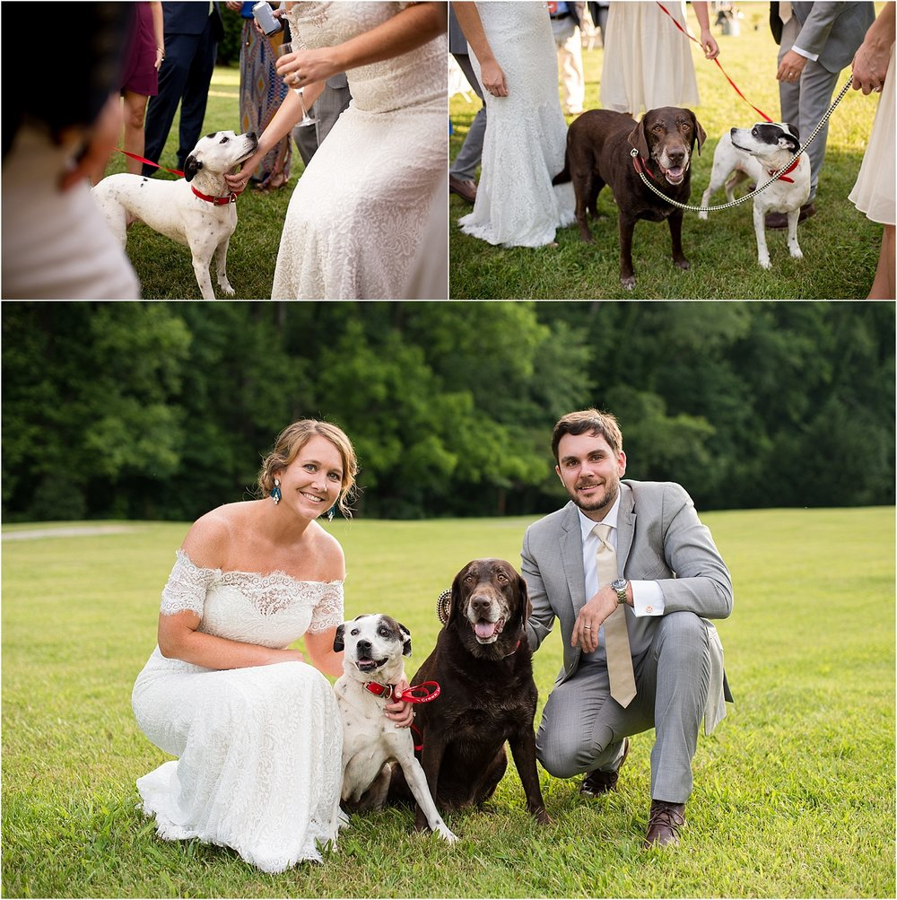 Bride-Groom-Dogs-Wedding-Day