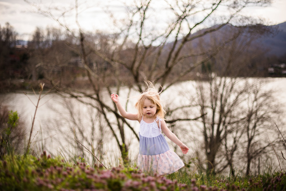 Spring-in-Waynesville