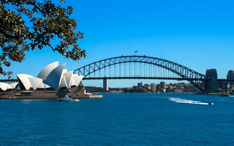 great-sydney-swim-in-sydney-harbour.jpg