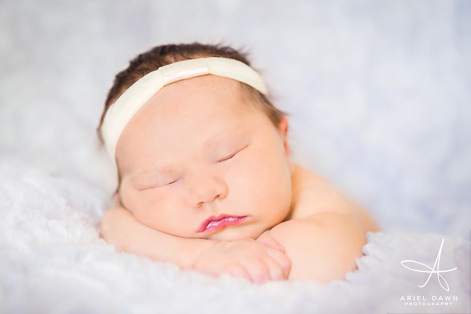 Great Falls Montana Newborn Photography