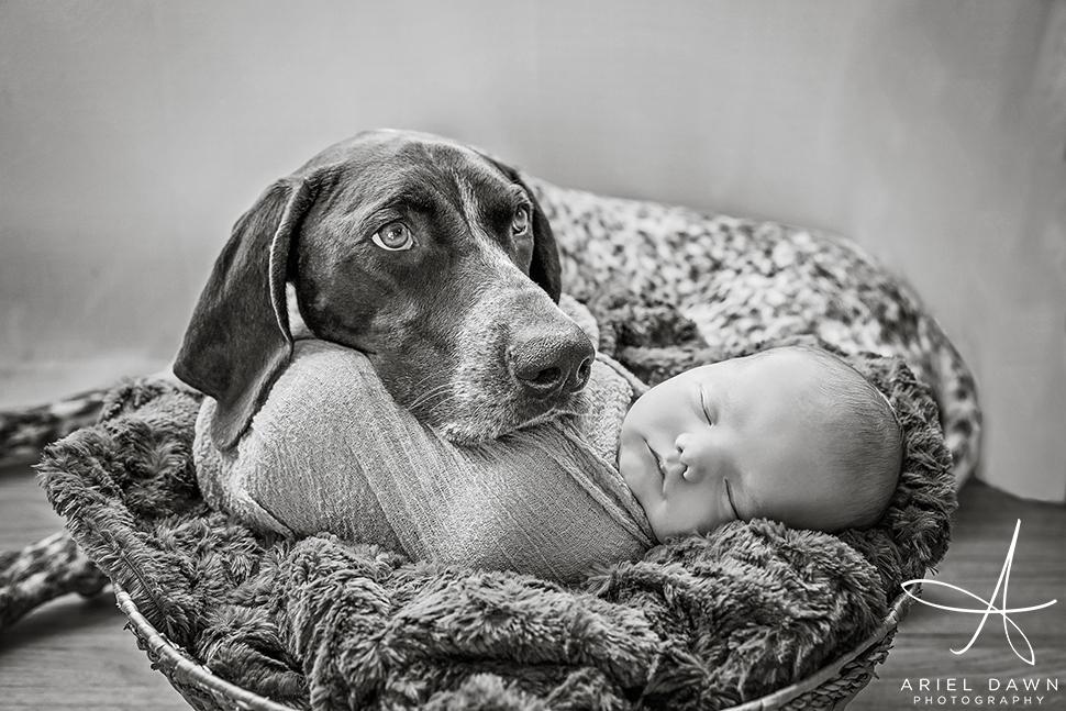 great falls montana newborn photographer | Ariel Dawn Photography