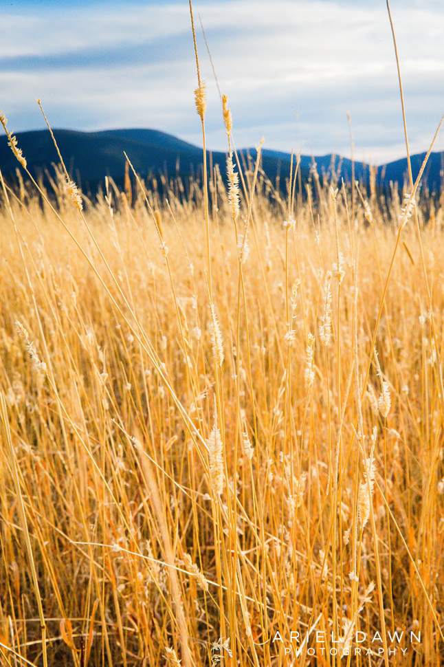 bend_Oregon_sunset_Engagement_session_43.jpg